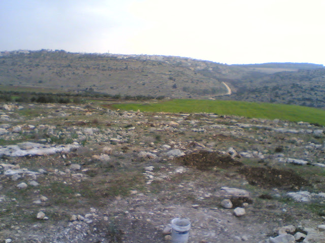 صور من وادي الحداد Sultan%3B%281436%29