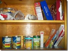 031309 Bare Cabinet