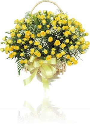 Flor_289035504_017_flores