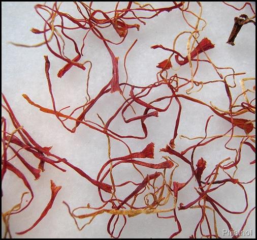 saffron 006-crop v1