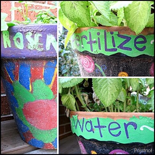 pots2-crop v1