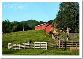 25 - Rural