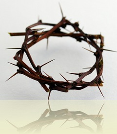 Crown of Thorns by SCapture