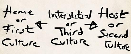Third Culture Interstitial