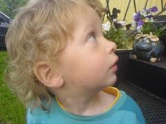 Elias tittar bakåt