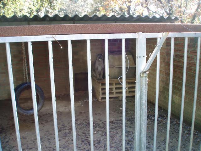 FOTOS de nuestro  Campo Sant celoni P1110061