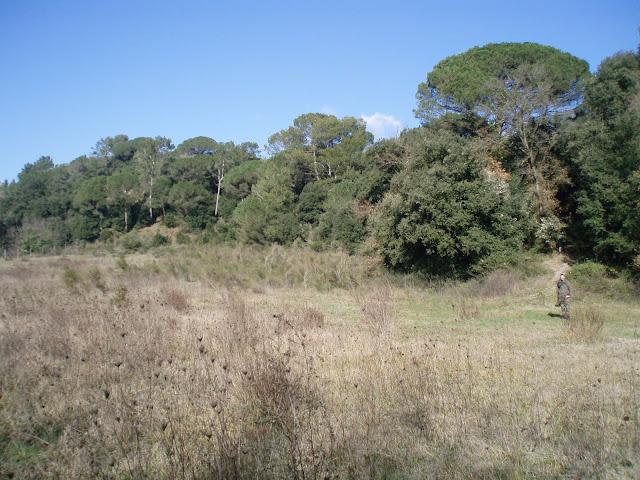 FOTOS de nuestro  Campo Sant celoni P1110064