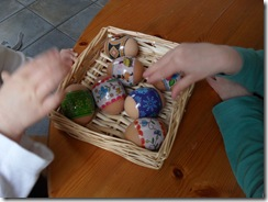 Eggs 2010 006