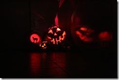 jack o'lanterns (640x427)