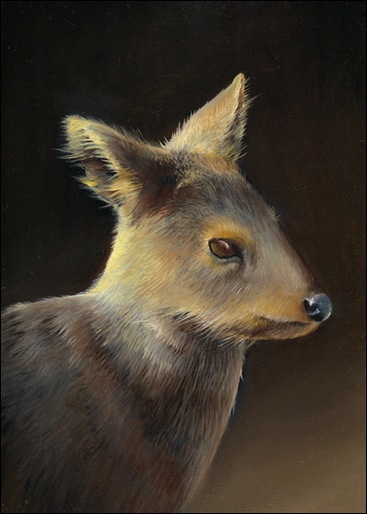 pudu painting by Jean Bradbury