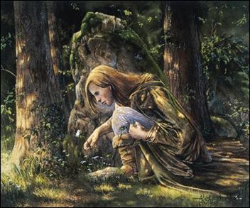elven cloak Rob Alexander