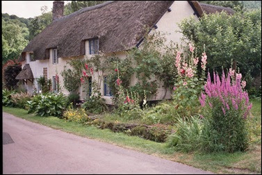 A very fairy garden cottage tuin for Tuin aanleggen nijmegen