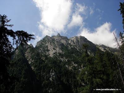 Valea Alba - Albisoara Branei (1).JPG