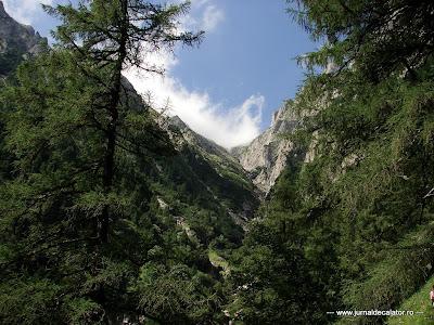 Valea Alba - Albisoara Branei (2).JPG