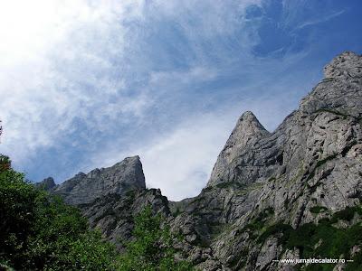 Valea Alba - Albisoara Branei (7).JPG