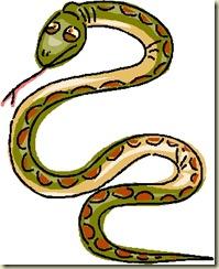 snake, symbol of wisdom