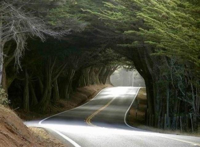 roads_15