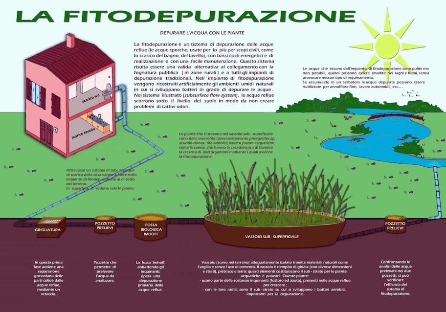 L alcantara e gli impianti di fitodepurazione for Depuratore laghetto