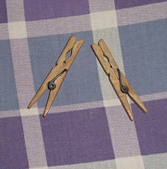Late 1950's early 1960's Clothes Pegs