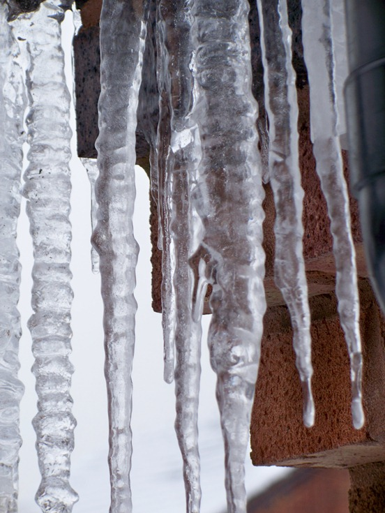 Icicle family 2