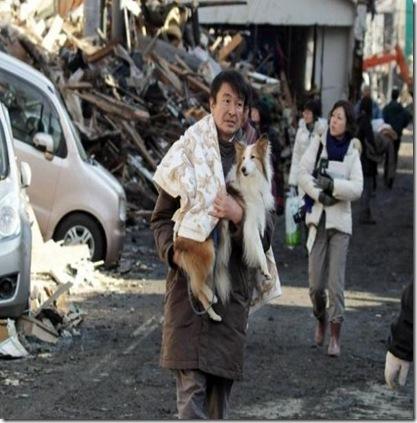 japonia dupa catastrofa