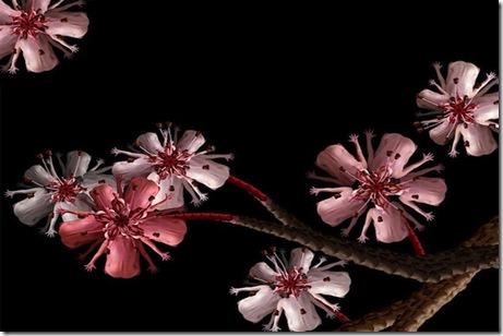 CeceliaWebber-flori de cires umane