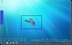 BethaFish