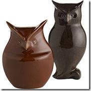 P1 owls