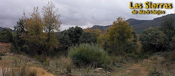 Sierras de Madridejos - Montes de Toledo