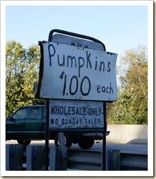 amish pumpkins $1