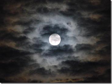 luna_nueva