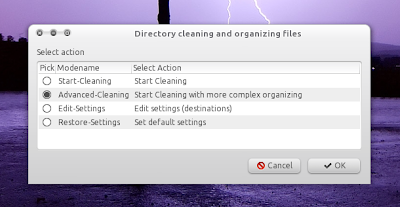 Directory cleaner and files organizer