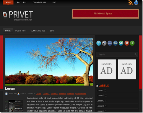 Privet Blogger Template