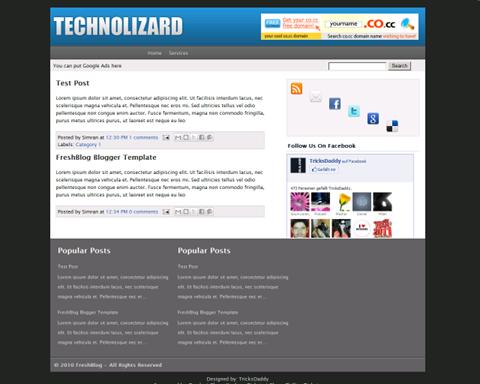 Technolizard