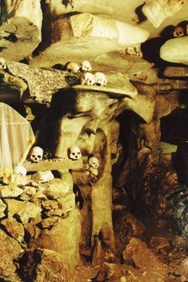 105_skull