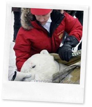 Putin and Polar bear