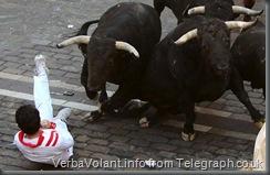 Pamplona Bull