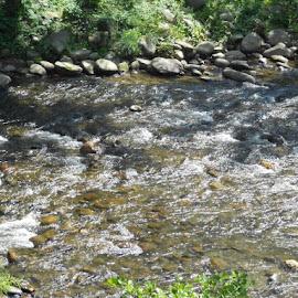 Creekside by Michele Kelley - Novices Only Landscapes ( water, creek, current, landscape, rocks )