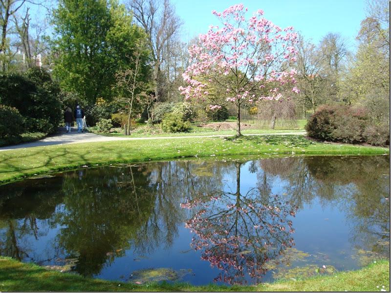 trompenburh arboretum 110