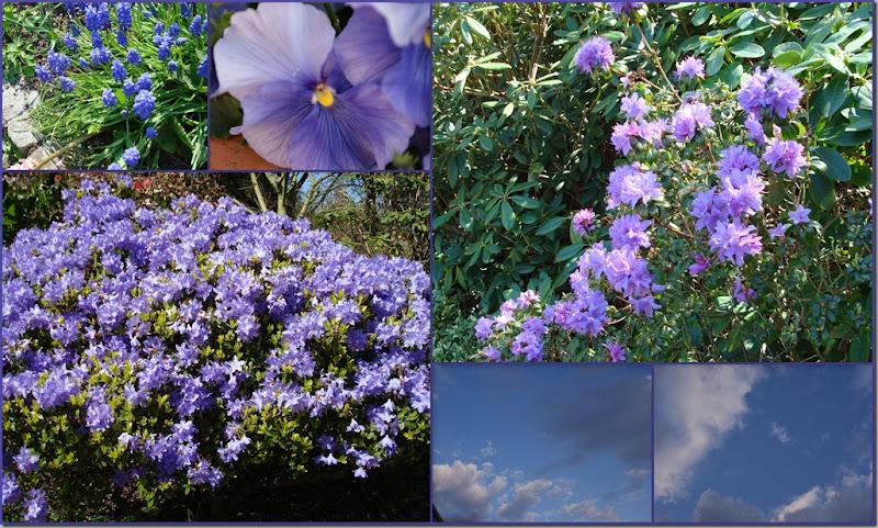 2010-03-30 deflt blauw4