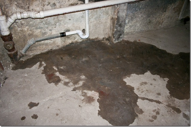 Poop Pipe 001
