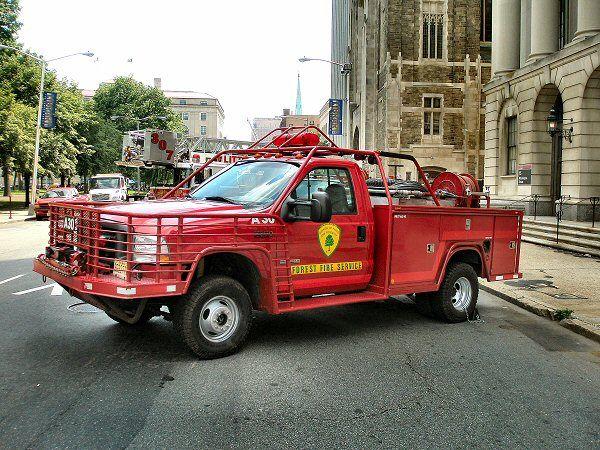 Term paper fire service