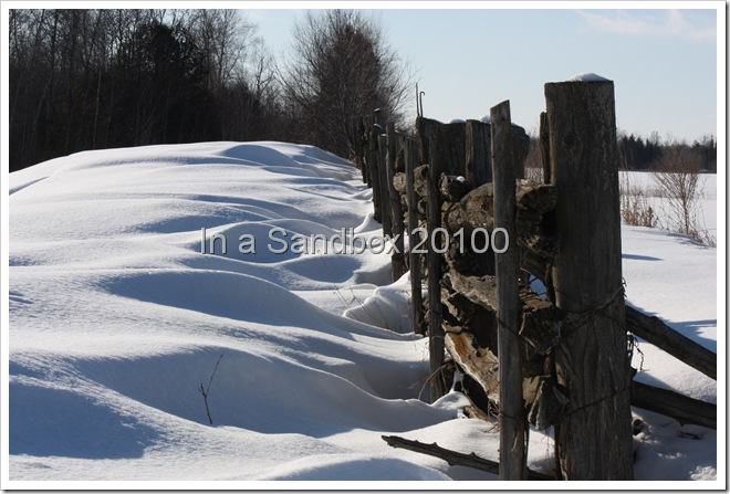 snow on fence 1