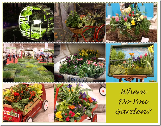 Where do you garden mosaic
