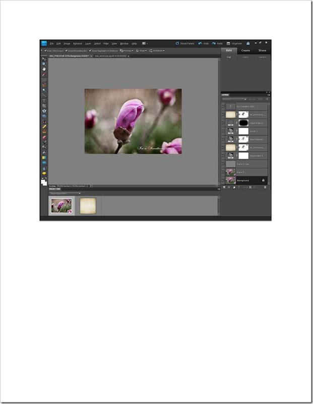 magnolia edit