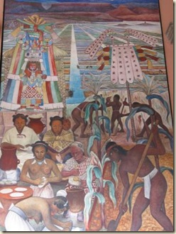 mural, cultivo
