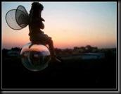 mariposa burbuja