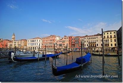 Venice2 Cecil Lee