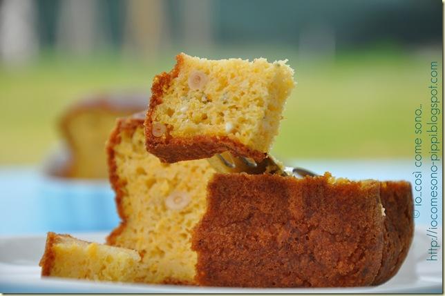 Plum cake piccante alla zucca2