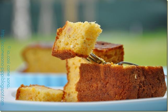 Plum cake piccante alla zucca1